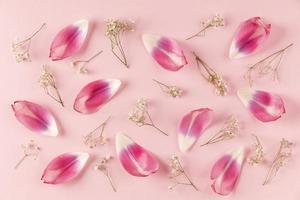 vista superior de pétalos de flores foto