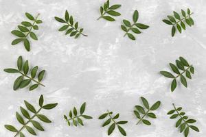 colección de hojas en la mesa foto