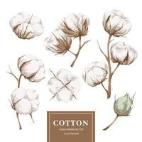 colección de elementos de algodón vector