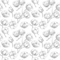 patrón sin costuras con algodón en estilo boceto vector