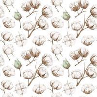 patrón sin costuras con algodón vector