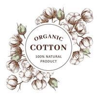 marco orgánico con planta de algodón vector