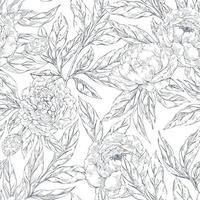 patrón sin costuras con bocetos de flores de peonías vector