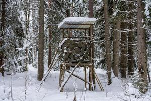 Hunting tower in the middle of the forest in winter photo