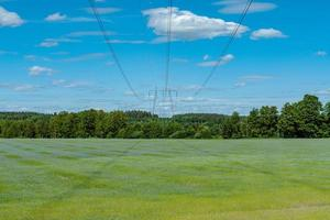 Powerlines crossing a large green field photo
