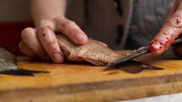 Limpiar y cortar pescado fresco con un cuchillo de cerca foto