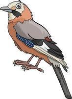 cartoon jay bird comic animal character vector