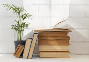 Books arrangement with plant photo