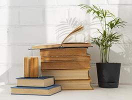 Stack of books with indoor plant photo
