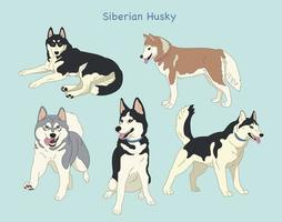 Siberian husky hand drawn style vector design illustrations.