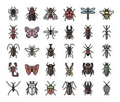 insect color outline vector icons