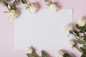 Beautiful roses on blank paper against pink background photo