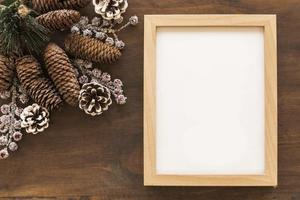 Blank frame with big cones photo