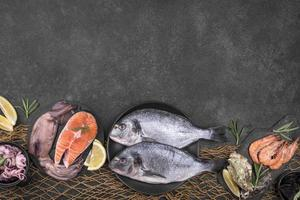 Arrangement of various types of fish with copy space photo