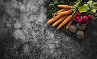 Assortment of veggies on gray copy space background photo