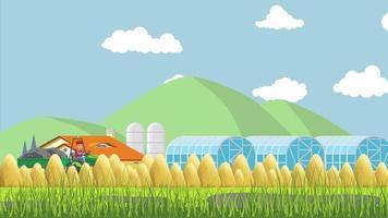 Weizenfeld und der glückliche Bauer video