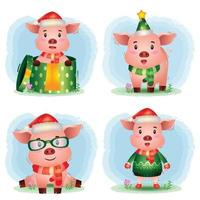 cute pig christmas characters collection with a hat, jacket, scarf and gift box vector