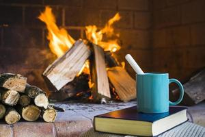 Beverage and book near fireplace photo