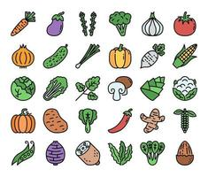 Vegetable Color Outline Vector Icons