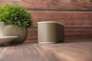 Smart speaker with plant photo