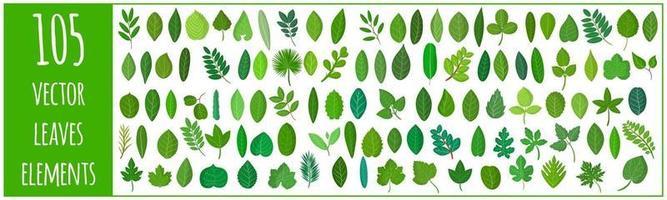 Conjunto de dibujos animados vectoriales de ilustraciones con diferentes hojas verdes de plantas y árboles vector