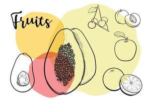 colección de ilustraciones de dibujo de líneas de frutas colorido llamativo. vector
