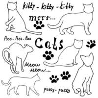 Hand drawn Sketch cats silhoets and traces. Outlined Doodles with Lettering. Vector Illustration Elements isolated on white background