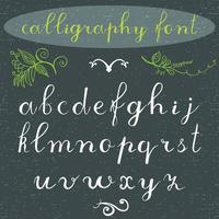 Font classic calligraphy lower vector