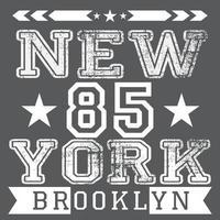 New York brooklyn grey vector