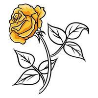 rosas dibujadas a mano. hermosa flor. estilo de dibujos animados. ilustración vectorial. vector