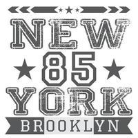 New York brooklyn grey isolated vector