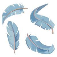 conjunto de plumas de ave. vector