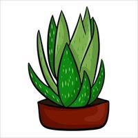 una planta de interior en maceta en un estilo plano de dibujos animados. un elemento para decorar tu hogar, habitación u oficina. ilustración vectorial aislado en un fondo blanco. vector