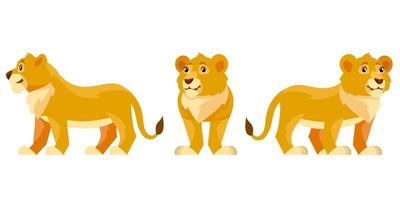 Lion cub in different poses. vector