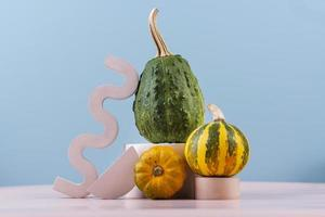 Composition of squashes photo