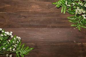 Racimos de manzanilla en mesa de madera foto