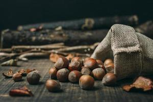 Close-up of chestnuts and bag photo
