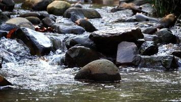 vista de cachoeira na natureza video
