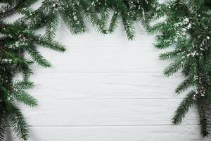 Coniferous branches with snow frame background photo