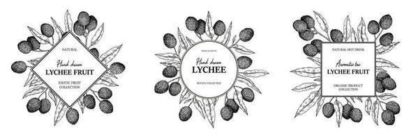 Set of hand drawn lychee designs for packaging, banners, advertising, newsletters. Vector illustration in sketch style