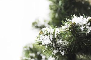 abeto con copos de nieve y ramitas foto