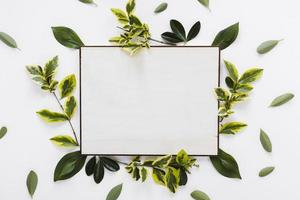Flat lay paper card template with leaves photo