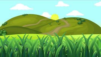 herbe dans une plaine verte dansant par le vent le matin video