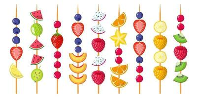 Fruit canapes mix on wooden skewers. Strawberries, blueberries, raspberries, watermelon, kiwi, banana, tangerine. vector