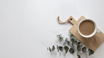 Café con eucalipto sobre fondo blanco. foto