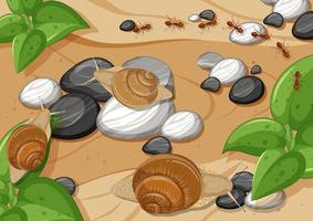 Close up aerial scene with many snail and ants vector