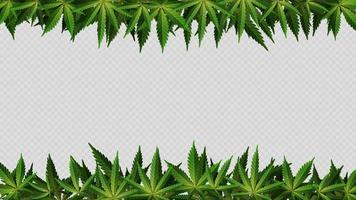 marco de hojas de cáñamo alrededor del espacio vacío horizontal. diseño de un marco hecho de hojas de cannabis para tu creatividad vector