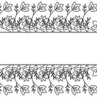 marco de borde de calumba vector