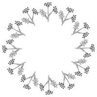 Angelica, frame, border vector