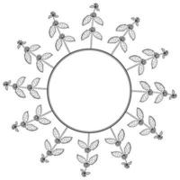 marrubio blanco, marco de borde vector